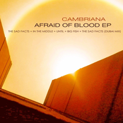 Afraid of Blood EP
