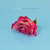 Picturesque: Back to Beautiful