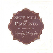 Shot Full of Diamonds: A Tribute to the Smashing Pumpkins