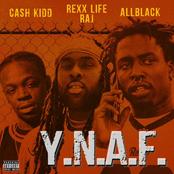 Y.N.A.F. (feat. Rexx Life Raj & Cash Kidd)