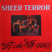 Sheer Terror: Just Can't Hate Enough