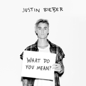 What Do You Mean? - Single