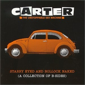 Starry Eyed And Bollock Naked (A Collection Of  B-Sides)