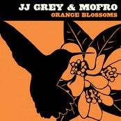 JJ Grey & Mofro: Orange Blossoms