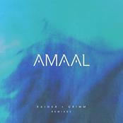 Amaal: Rainer + Grimm Remixes