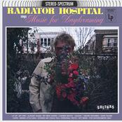 Radiator Hospital: sings 'Music for Daydreaming'