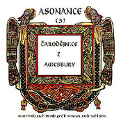 Carodejnice z Amesbury