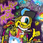 Subtronics: Wooked On Tronics