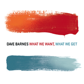 Dave Barnes: What We Want, What We Get