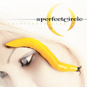 Weak And Powerless by A Perfect Circle