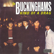 The Buckinghams: Kind Of A Drag