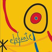 Elephante: El que busca encuentra