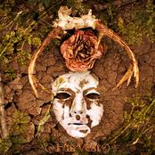 Harvest (Single)