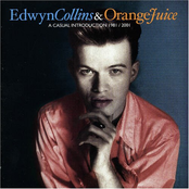 A Casual Introduction 1981/2001 – The Best of Edwyn Collins and Orange Juice