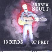 Andrew Scott: 13 Birds Of Prey