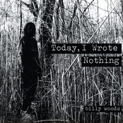 Today, I Wrote Nothing [Explicit]