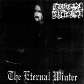 The Eternal Winter
