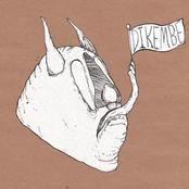 Dikembe: Chicago Bowls