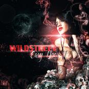 Wildstreet: Easy Does It - Single
