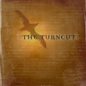 The Turnout: The Turnout