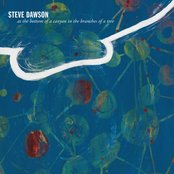 Steve Dawson - At the Bottom of a Canyon in the Branches of a Tree Artwork