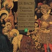 Ton Koopman: Bach, JS : Weihnachtsoratorium [Christmas Oratorio]
