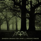 Despair (Within The Void)