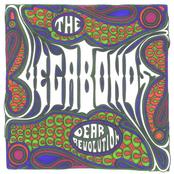 The Vegabonds: Dear Revolution