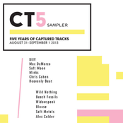 CT5 Sampler: Five Years of Captured Tracks