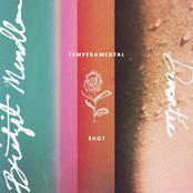 Temperamental Love - Single