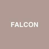 Falcon (feat. Raury) - Single