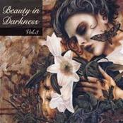 Beauty In Darkness Vol. 3