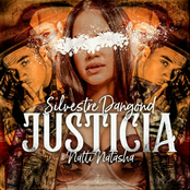 Silvestre Dangond: Justicia