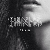 Brain - Single