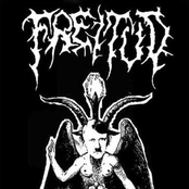 N.S. occult Metal