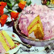 Dreamcake