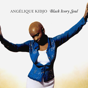 Angelique Kidjo: Black Ivory Soul