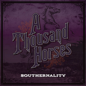 A Thousand Horses: Southernality