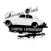Duncan Sheik: White Limousine