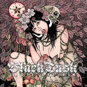 Black Tusk: Taste The Sin