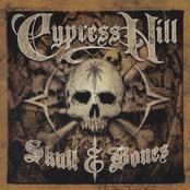 Skull & Bones - Skull CD