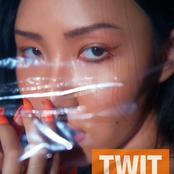 TWIT - Single