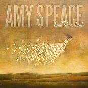 Amy Speace: Land Like A Bird
