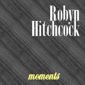 Robyn Hitchcock: Moments