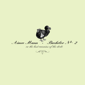 Aimee Mann: Bachelor No. 2 (or, The Last Remains of the Dodo)