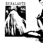 Exhalants: Exhalants