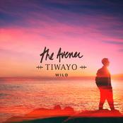 The Avener - Wild