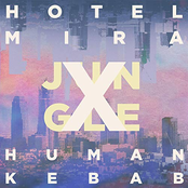 Jungle (Human Kebab Remix) - Single