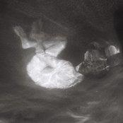 Alice Phoebe Lou - Glow Artwork