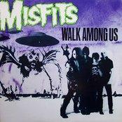 The Misfits - Walk Among Us Artwork